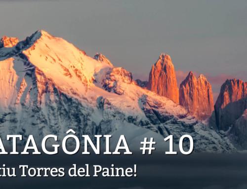 patagonia, dia 10: Primeira saída atrás dos Pumas