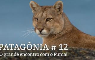 chamada-patagonia12